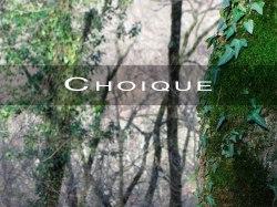Choique