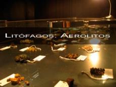 Litófagos: Aerolitos