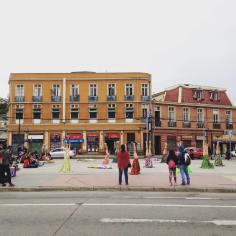 arboles-avda-argentina-07