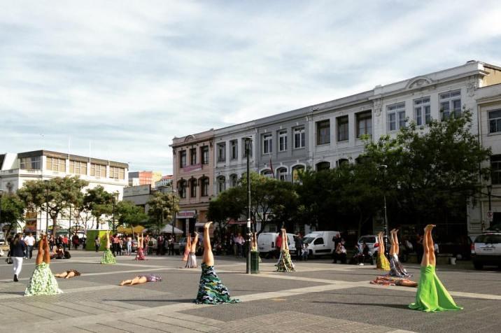 arboles-plaza-civica-03