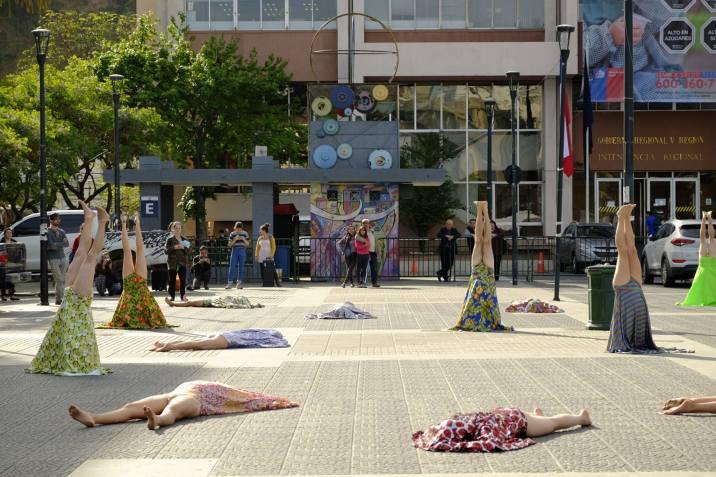 arboles-plaza-civica-04